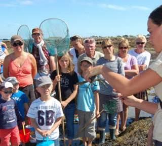 Initiation à la pêche à pied à la Trinité-sur-Mer